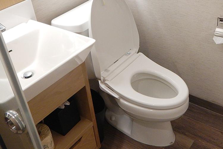 黒ずみ トイレ